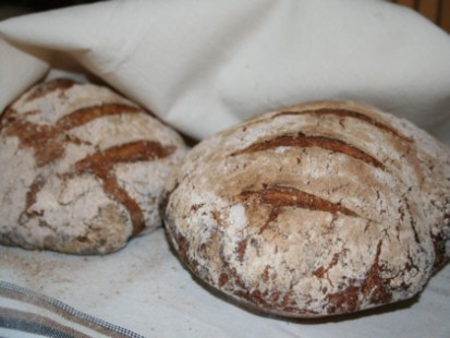 glutenfri-levain-fransk-surdeg.jpg